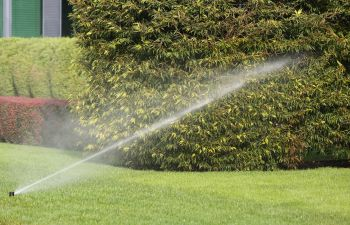 Sprinklers and Water
